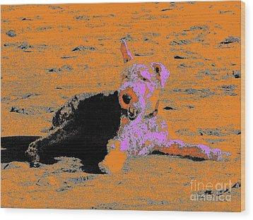 Beach Dog 8 Wood Print by Nina Kaye