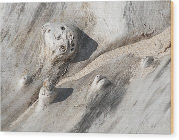 Beach Driftwood I Wood Print by Peg Toliver