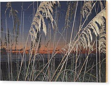Beach Grass Wood Print by Susan McNamara