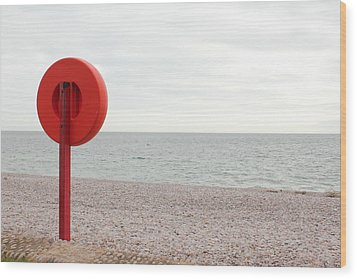 Beach In Budleigh Salterton Wood Print by Thenakedsnail