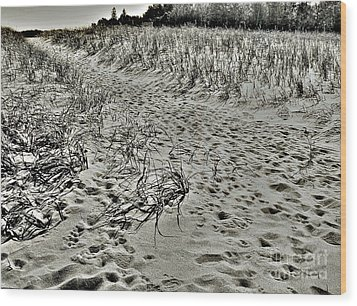 Wood Print featuring the photograph Beach Path by Lin Haring