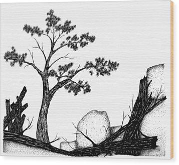 Beach Pine Wood Print by Jason Carroll