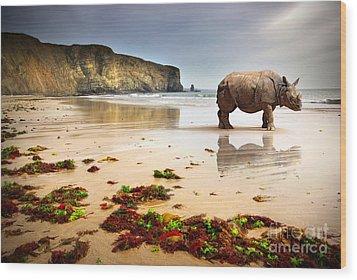 Beach Rhino Wood Print by Carlos Caetano