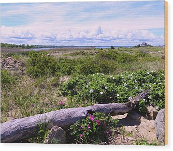 Beach Roadscape Wood Print by Janice Drew