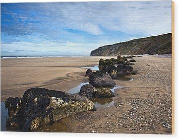 Beach Stones Wood Print by Svetlana Sewell