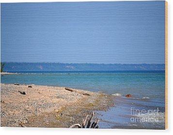 Beach Views Wood Print by Dyana Rzentkowski
