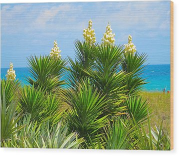 Beach Yucca In Blossom Wood Print by Kathryn Barry
