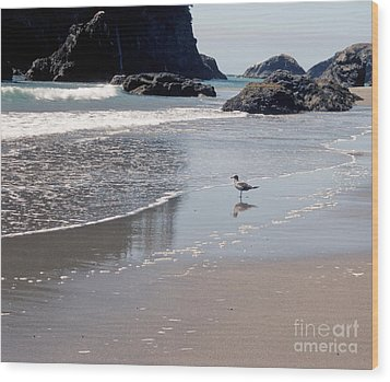 Wood Print featuring the photograph Beachcomber by Sharon Elliott