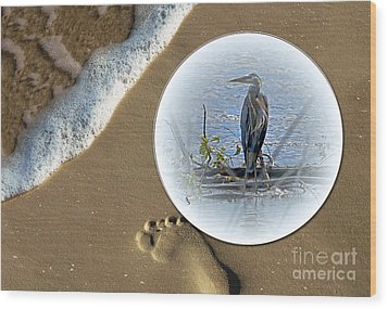 Beached Heron Wood Print