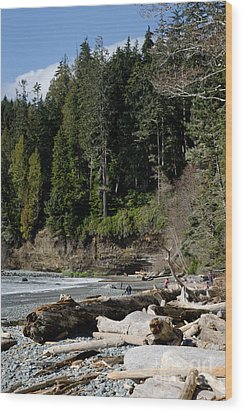 Beached Logs China Beach Vancouver Island Bc Wood Print by Andy Smy