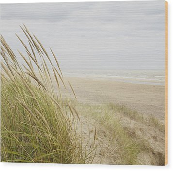 Beachscape 8 Wood Print by Ben Richardson