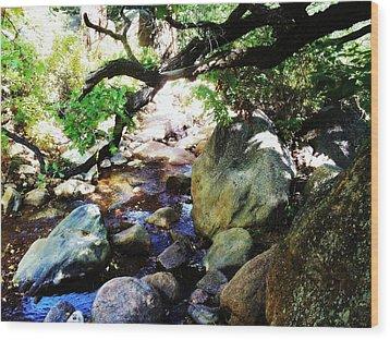 Wood Print featuring the photograph Bear Creek Branch by Clarice  Lakota