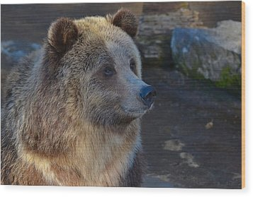 Bear Joy Wood Print