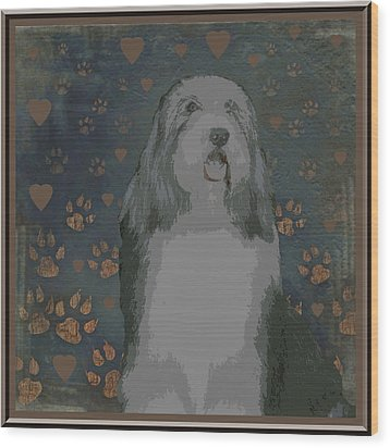 Bearded Collie Wood Print by One Rude Dawg Orcutt