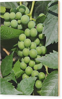 Beautiful Grapes Wood Print by Carol Groenen