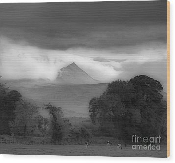 Beautiful Killarney Mountains Ireland Black And White Wood Print by Nature Scapes Fine Art