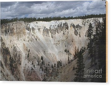 Wood Print featuring the photograph Beautiful Lighting On The Grand Canyon In Yellowstone by Living Color Photography Lorraine Lynch