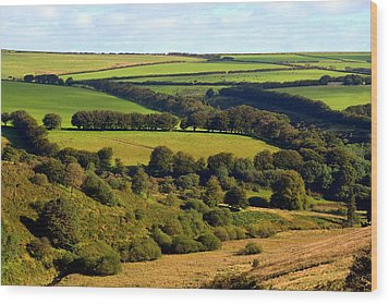 Beautiful Somerset Wood Print by Carla Parris