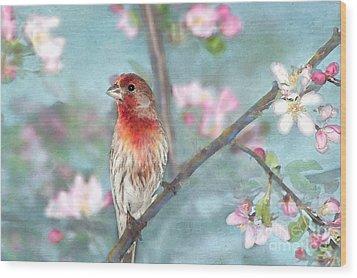 Beautiful Spring Wood Print by Betty LaRue