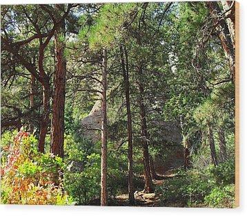 Beautiful Trail North Canyon Wood Print by Clarice  Lakota