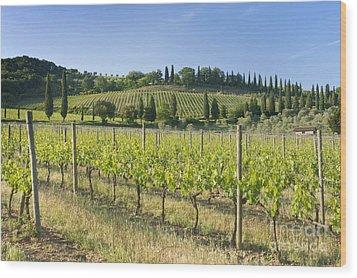 Beautiful Vineyard Wood Print by Rob Tilley