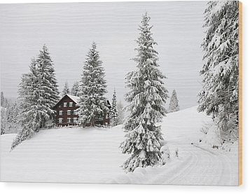Beautiful Winter Landscape With Trees And House Wood Print by Matthias Hauser