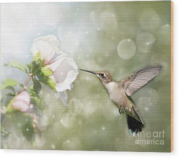 Beauty In Flight Wood Print by Sari ONeal