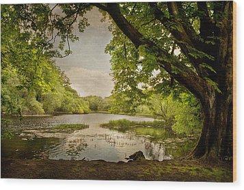 Beauty Of Ireland Wood Print by Cheryl Davis