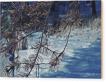 Wood Print featuring the photograph Beauty Of Simplicity by Janie Johnson