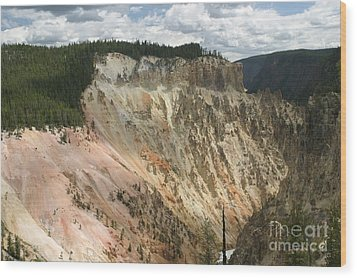 Wood Print featuring the photograph Beauty Of The Grand Canyon In Yellowstone by Living Color Photography Lorraine Lynch