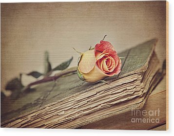 Beauty With Age Wood Print by Cheryl Davis