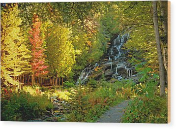 Beaver Brook  Wood Print
