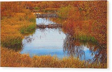 Beaver Ponds Wood Print by Terril Heilman