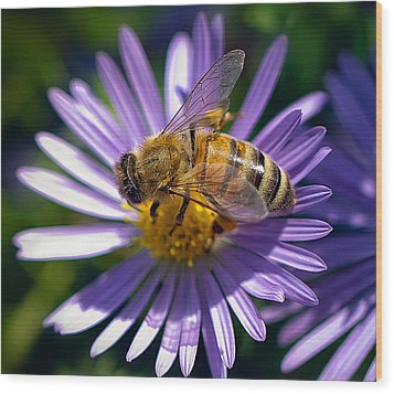 Wood Print featuring the photograph Bee by Anna Rumiantseva