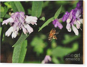 Bee In Flight Wood Print by Kaye Menner