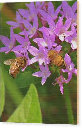 Wood Print featuring the photograph Bees One by Craig Wood