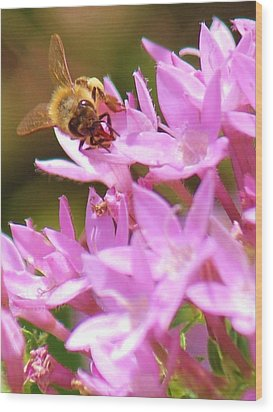 Wood Print featuring the photograph Bees Two by Craig Wood