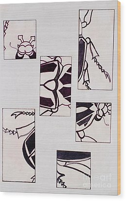 Wood Print featuring the drawing Beetle Mania by Vonda Lawson-Rosa