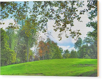 Wood Print featuring the photograph Beginning Of Fall by Michael Frank Jr