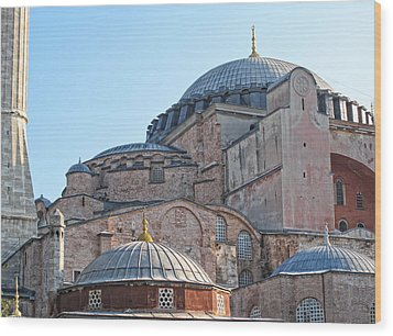 Behind The Blue Mosque Wood Print by Linda Pulvermacher
