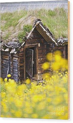 Behind Yellow Flowers Wood Print by Heiko Koehrer-Wagner