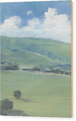 Bembridge Down In Early Summer Wood Print by Alan Daysh