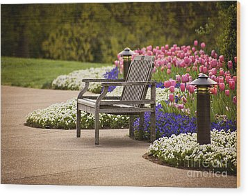 Bench In The Park Wood Print by Cheryl Davis