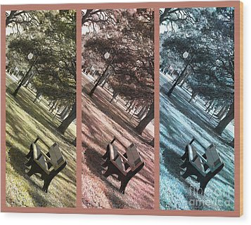Bench In The Park Triptych  Wood Print by Susanne Van Hulst