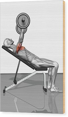 Bench Press Incline (part 1 Of 2) Wood Print by MedicalRF.com