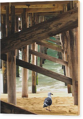 Beneath The Pier Wood Print by Diane Wood