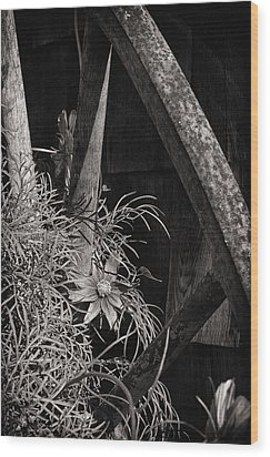 Beneath The Wheel Wood Print by Susan Capuano