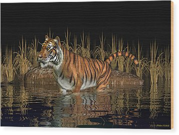 Bengal Tiger Wood Print by Walter Colvin