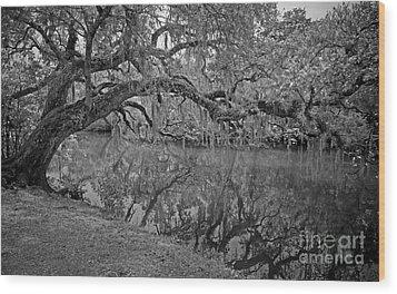 Bent Oak River Reflection Wood Print by Larry Nieland