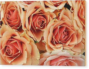 Bergen Roses Wood Print by KG Thienemann